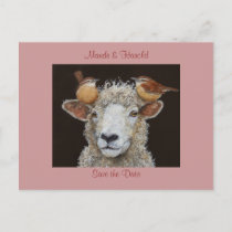 Sheep save the date postcard