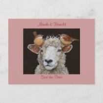 Sheep save the date postcard
