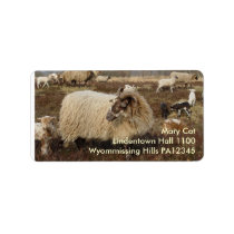 Sheep - Sheep in Heather field Label