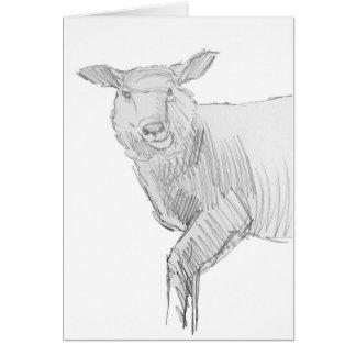 Sheep Sketch Drawing Card
