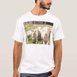 Sheep Stampede T-Shirt