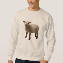 sheep sweatshirt
