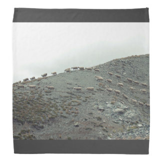 Sheep Themed, Herded Flock Of Sheep In Neatly Rows Bandana