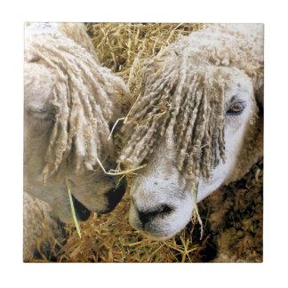 SHEEP CERAMIC TILE