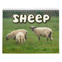 Sheep Wall Calendar