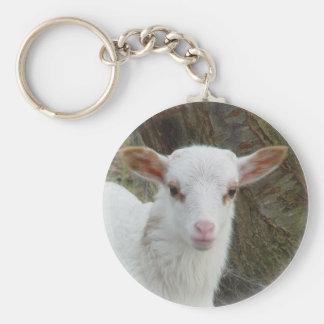 Sheep - White Lamb Basic Round Button Keychain