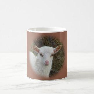 Sheep - White Lamb Coffee Mug