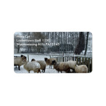 Sheep - Winter season Label