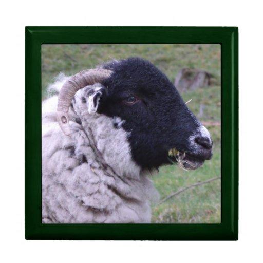 sheep wooden gift box