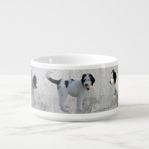 Sheepadoodle Chili Bowl