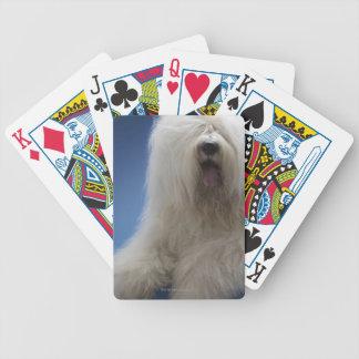 Sheepdog Bicycle Playing Cards