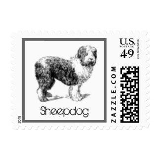 Sheepdog Dog Postage Stamp for Letters
