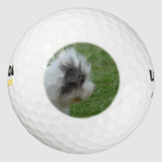 Sheepdog Pack Of Golf Balls