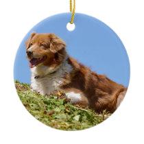 Sheepdog in french Alps Ceramic Ornament