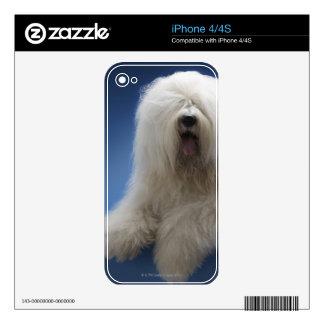 Sheepdog iPhone 4S Skin