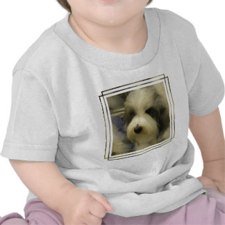 Sheepdog Picture Baby T-Shirt