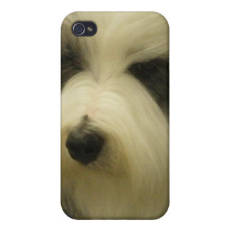 Sheepdog Picture iPhone 4 Case