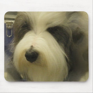 Sheepdog Picture Mouse Pad