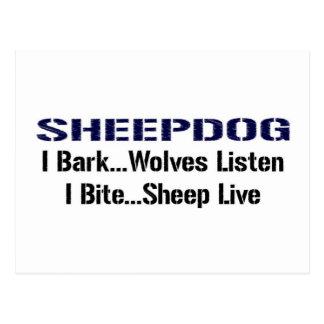 Sheepdog Postcard