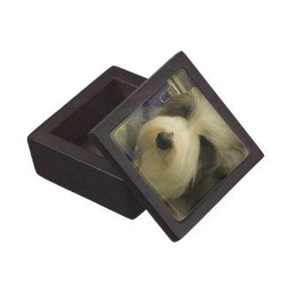 Sheepdog Premium Gift Box
