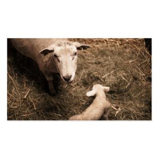 Sheepfold Business Card
