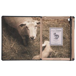 Sheepfold iPad Cases