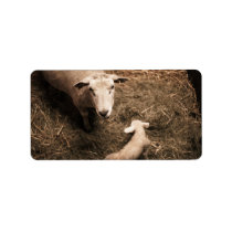Sheepfold Label
