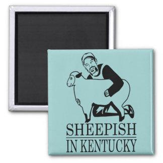 Sheepish In Kentucky Magnet