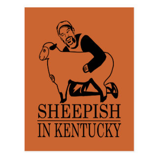 Sheepish In Kentucky Postcard