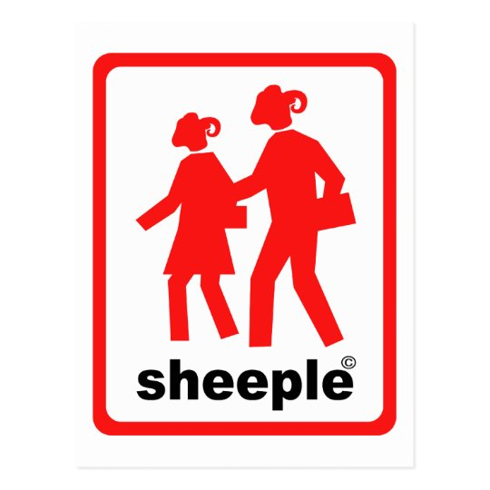 Sheeple Postcard