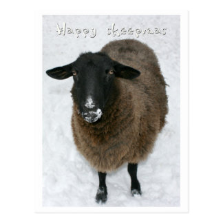 Sheepmas felices postales