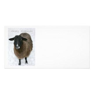 Sheepmas felices tarjeta fotográfica
