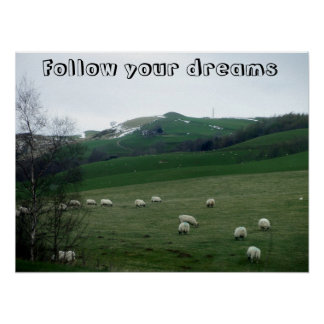 Sheeps in the landscape poster