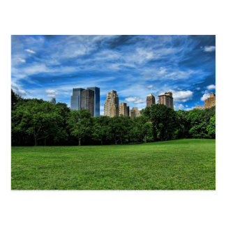 Sheep's Meadow, Central Park Post Card