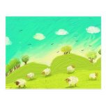 sheeps postcard