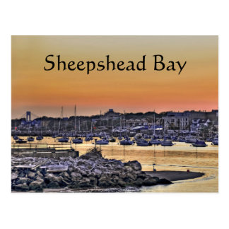 Sheepshead Bay Brooklyn NY Postcard