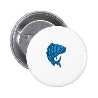 Sheepshead Fish Drawing Pinback Button