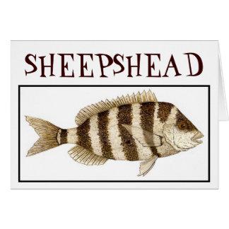 SHEEPSHEAD TARJETA PEQUEÑA
