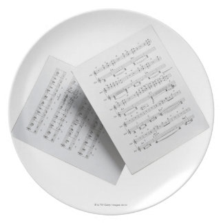 Sheet Music 12 Party Plate