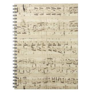 Sheet Music on Parchment Handwritten in Ink Notebook