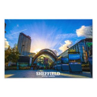 Sheffield Winter Garden Art Photo