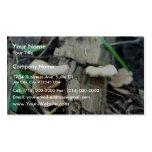 Shelf Mushroom Business Card Template