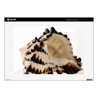 "Shell 15"" Laptop Skin"