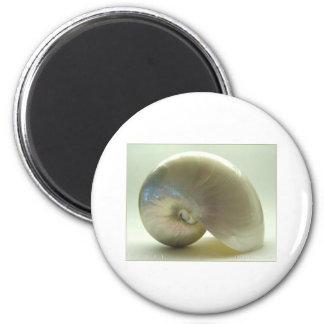 Shell #1 magnet
