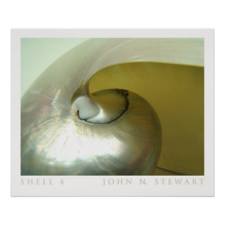 Shell #4 poster