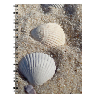 Shell and Sand Photo Notebook (80 Pages B&W)