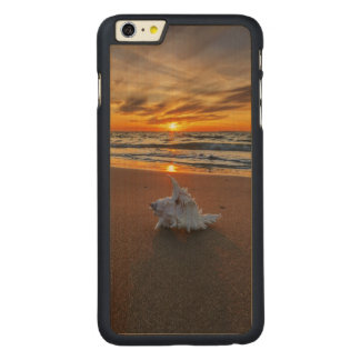 Shell At The Beach At Sunset | Kos Island Carved® Maple iPhone 6 Plus Case