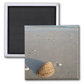 Shell Beach 2 Inch Square Magnet
