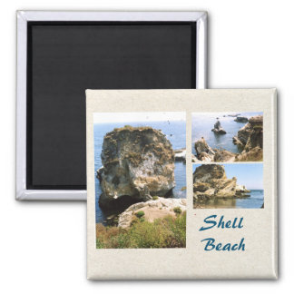 Shell Beach, California Photo Template Magnet