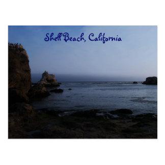 Shell Beach, California Postcard